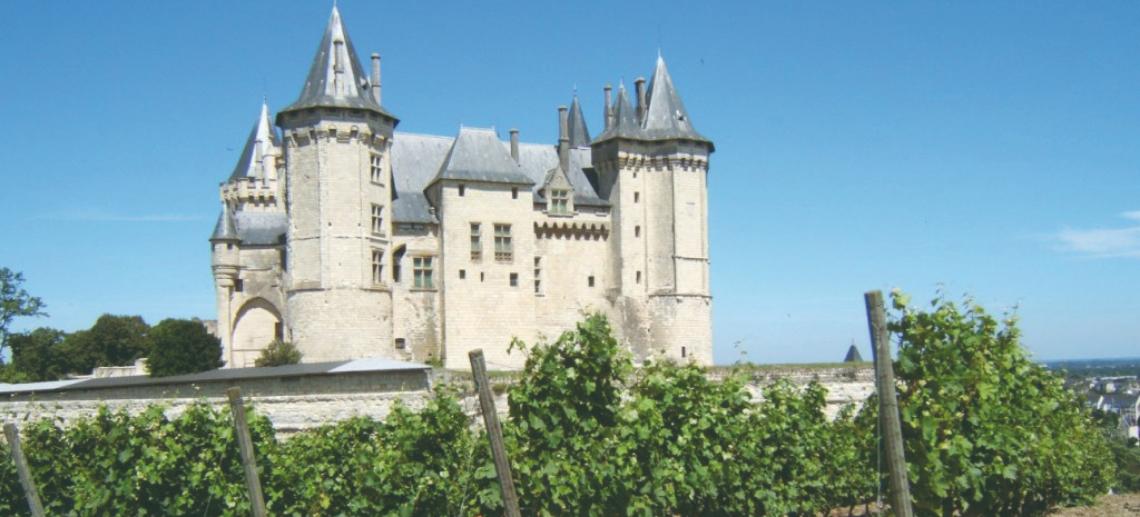 Saumur Champigny Site Officiel Saumur Champigny
